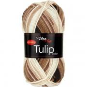 Příze Tulip Color, 5217